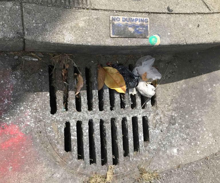 Plastic trash and microplastics can get washed into stormwater systems that eventually empty into waterways.